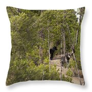 Yellowstone Wolves Throw Pillow
