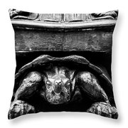 Yertle The Turtle Protagonist Throw Pillow