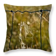 Yesterdays Web Throw Pillow