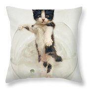 Yin Yang Kitten Throw Pillow