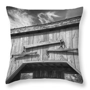 Yoke 7p01958b Throw Pillow