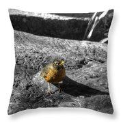 Young Bird Exploring Throw Pillow