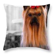Yorkshire Terrier Throw Pillow