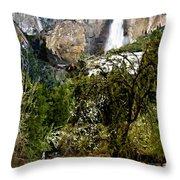 Yosemite Apple Orchard  Throw Pillow