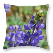Yosemite Lupine And Ladybug Throw Pillow