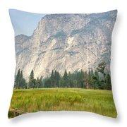 Yosemite Meadow Throw Pillow