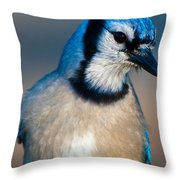 You Are All Wondering Why I Called This Meeting.. Throw Pillow