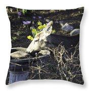 You Are Not A Bird Throw Pillow