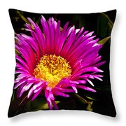 You Are So Beautiful Throw Pillow