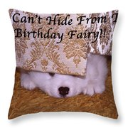 You Can't Hide Birthday Card Throw Pillow
