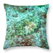 You Dont See Me Throw Pillow