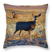 You Have Her Attention Throw Pillow