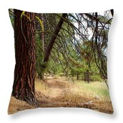 You Have To Go Somewhere To Get Anywhere Throw Pillow