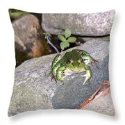 You Lookin At Me Throw Pillow