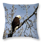 You Looking At Me? Throw Pillow