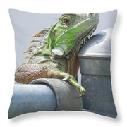 You Look'n At Me Throw Pillow