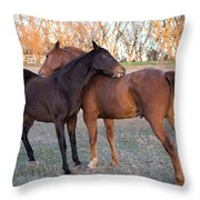 You Scratch My Back And I'll Scratch Yours Throw Pillow