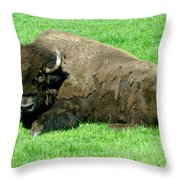 You Tell Him He Needs To Lose Weight Throw Pillow