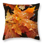 You Waited For Me To Fall Throw Pillow by Catherine Reusch Daley
