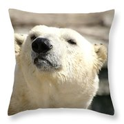 You Want Something? Throw Pillow