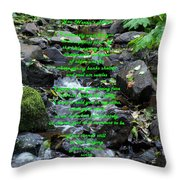 You Weren't There Throw Pillow