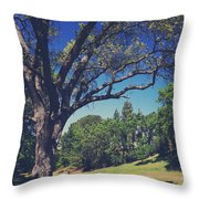 You'll Know It's True Throw Pillow