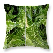 Young Aloe In Stereo Throw Pillow