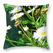 Young And Old Throw Pillow