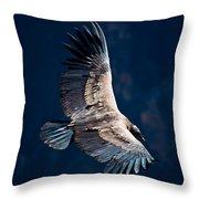 Young Andean Condor Throw Pillow