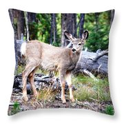Young Beauty Throw Pillow