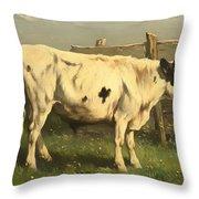 Young Bull Throw Pillow
