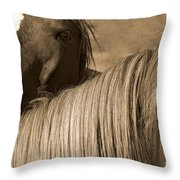 Young Colts Throw Pillow
