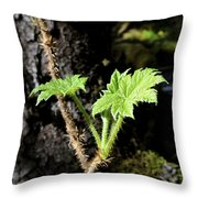 Young Devils Club Throw Pillow