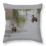 Young Ducks Throw Pillow