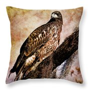 Young Eagle Pose II Throw Pillow