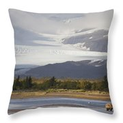 Young Grizzly Fishing At Hallo Bay Throw Pillow