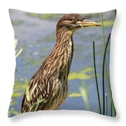Young Heron Throw Pillow
