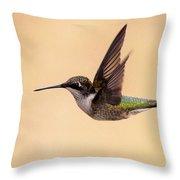 Young Hummingbird - Sailor Throw Pillow