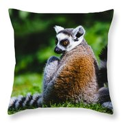 Young Lemur Throw Pillow