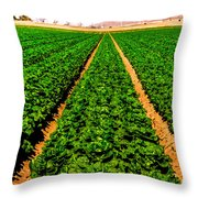 Young Lettuce Throw Pillow