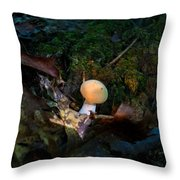 Young Lonely Mushroom 2 Throw Pillow