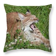 Young Lynx Yawning Throw Pillow