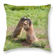 Young Marmots Throw Pillow