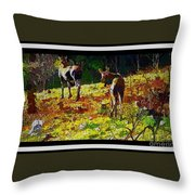 Young Moose In Autumn Throw Pillow