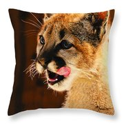 Young Mountain Lion Throw Pillow