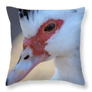 Young Muscovy Closeup Throw Pillow