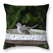 Young Northern Mockingbird In Bird Bath Throw Pillow