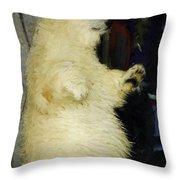 Young Polar Bear And Boy  Throw Pillow
