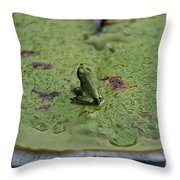 Young Prince Throw Pillow
