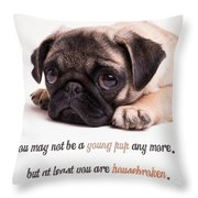 Young Pup Throw Pillow